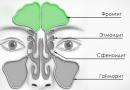 Фронтит: симптомы и лечение у взрослых